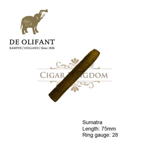 De Olifant Giant Sumatra 1s (1-Stick)